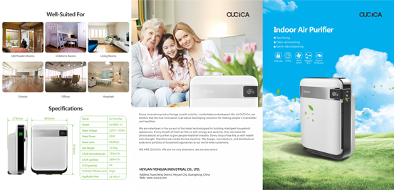 air-purifier1 Flyers