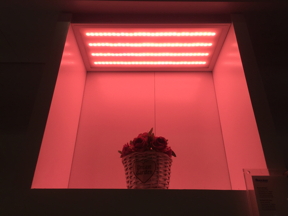 plant-grow-light Huntkey LED Lighting Products Make Debut Appearance at CES 2018