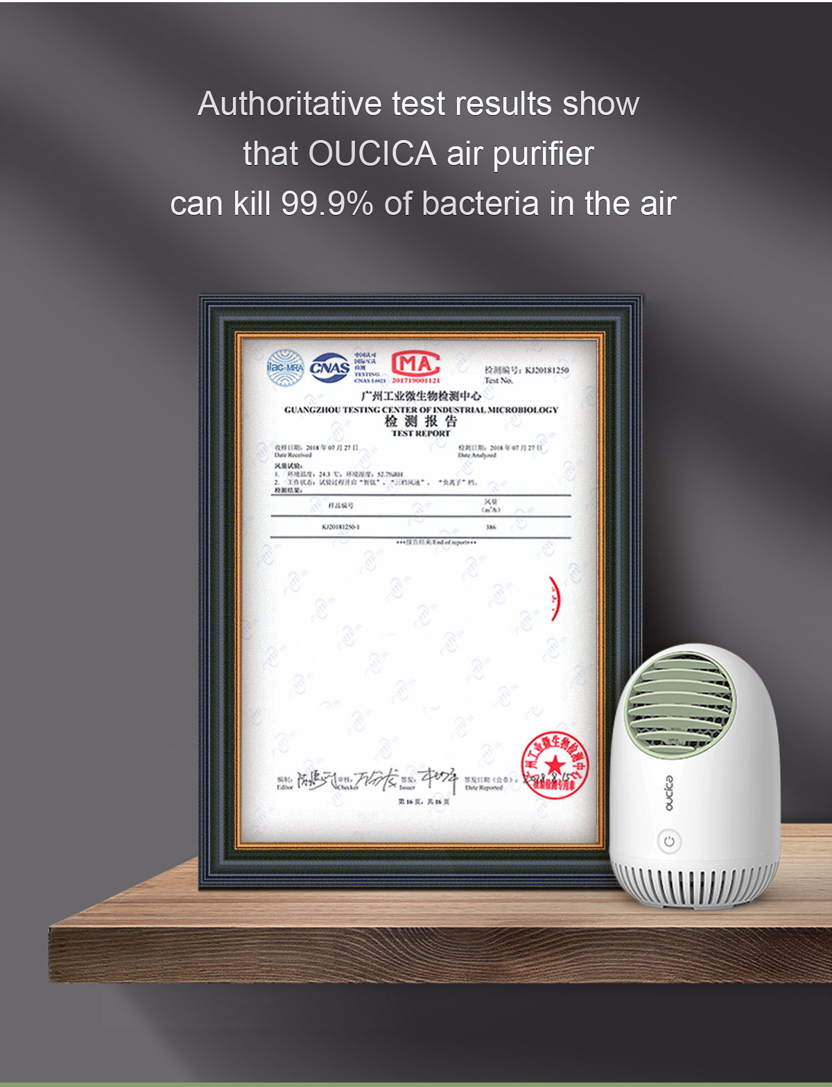 DJ101_12 Desktop Air Purifier